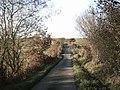 Tarka Trail near Hatherleigh Moor - geograph.org.uk - 80162.jpg