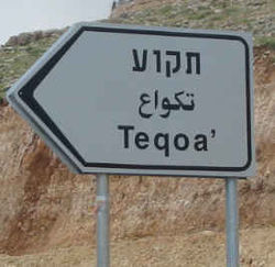 Trilingual road sign at entrance to Tekoa