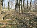 Terešov ŽH 07 - velká plocha hřbitova je využita jen zčásti.JPG