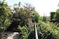 Terra Botanica 2017.08.23 Angers 128.jpg