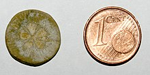 Tessera size comparison with Eurocent.jpg