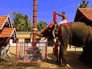 Pallippad - Temple elephant