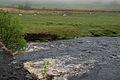 The Afon Tryweryn just below Pont Rhyd-y-fen - geograph.org.uk - 1325005.jpg
