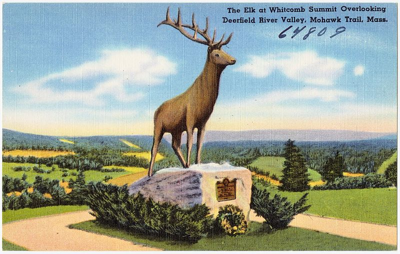 File:The Elk at Whitcomb Summit overlooking Deerfield River Valley, Mohawk Trail, Mass (64809).jpg