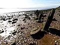 The Humber Shoreline - geograph.org.uk - 1199911.jpg