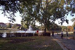 The Lake, Raphael Park, Gidea Park - geograph.org.uk - 1557563.jpg