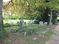 The old graveyard - geograph.org.uk - 1377796.jpg