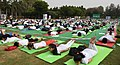 The participants in the mass performance of Common Yoga Protocol, on the occasion of the 4th International Day of Yoga -2018, at Nehru Park, in New Delhi on June 21, 2018 (2).JPG