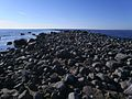 The seashore in Tahkuna.JPG