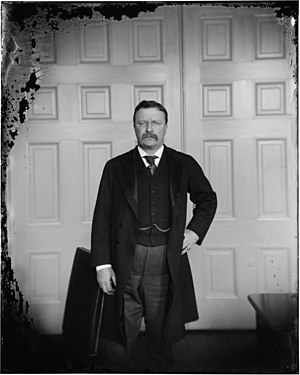 Collodion process - This deteriorated dry plate portrait of Theodore Roosevelt is similar to a wet plate image but has substantial differences.
