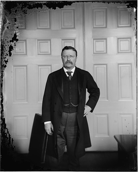 480px-Theodore_Roosevelt_on_broken_glass