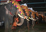 Thrippunithura-Elephants2 crop
