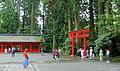 Torii - Hakone-jinja - Hakone, Japan - DSC05825.jpg