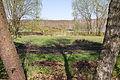 Totes Moor im LSG Schneerener Geest vor Neustadt am Rübenberg IMG 6815.jpg