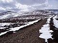Track on Carn Mheadhoin - geograph.org.uk - 744612.jpg