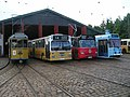 Trams and buses on Sporvejsmuseet.JPG