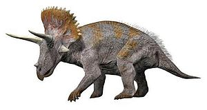 1889 in paleontology - Triceratops