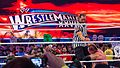 Triple H v Undertaker at Wrestlemania XXVIII (7206075218).jpg