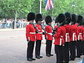Trooping the Colour 2006 - P1110259 (169173275).jpg