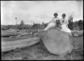 Two unidentified women and a dog seated on a large kauri log. ATLIB 286825.png