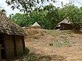 UNESCO Niokolo-Koba National Park Senegal (3687372204).jpg