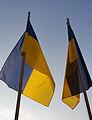 Ukrainian flag (8162368794).jpg