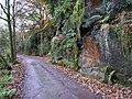Unnamed Lane^ Broadbottom - geograph.org.uk - 608615.jpg