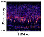 Spectrogram of the Upsweep sound