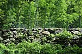 Uwajima Castle 05.JPG