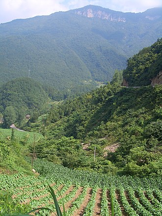 Xingshan County - Near Wujiaping (between Gaoqiao and Nanyang)