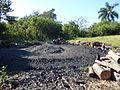 Vallée de Viñales-Fabrication du charbon de bois (2).jpg