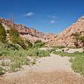 Valle de Jere-CTJ-IMG 5700.jpg