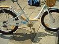 Vida Bicycle 2008 17.JPG