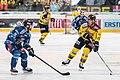 Vienna Capitals vs Fehervar AV19 -68.jpg