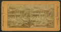 View in Lincoln Park, Chicago, Ill, from Robert N. Dennis collection of stereoscopic views.png