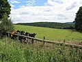 View near Lawns Farm... - geograph.org.uk - 508829.jpg