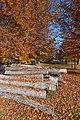 Viktring Stiftspark mit Buchen und Rundholz 01112015 8600.jpg