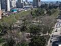 Vista Aerea Parque Almagro.JPG