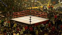 WWE ring.jpg