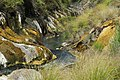 Waimangu Stream (Hot Water Creek) flowing through silica-covered trench.jpg