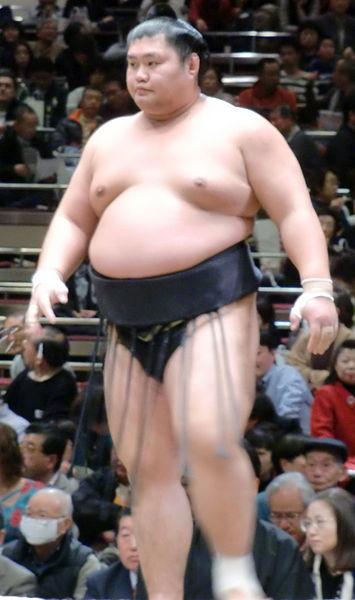シコふんじゃった!山下さんと話す2012年相撲談義