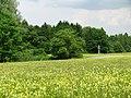 Waldfriedhof Neuer Teil GO-9.jpg