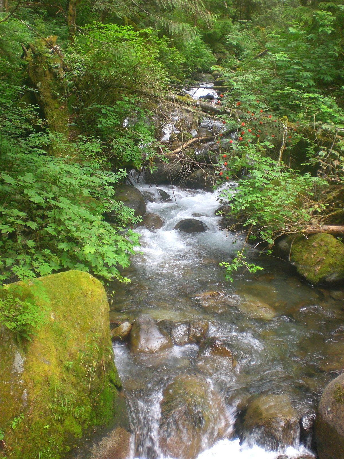 Wallace River Wikipedia