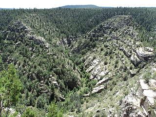 Walnut Creek (Arizona)
