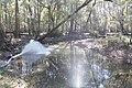 Water flowing 3 (6466592889).jpg