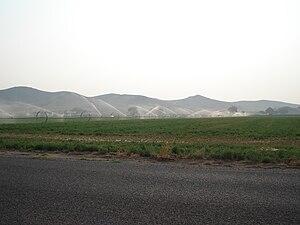 Yerington, Nevada - Watering an alfalfa field in Yerington, Nevada