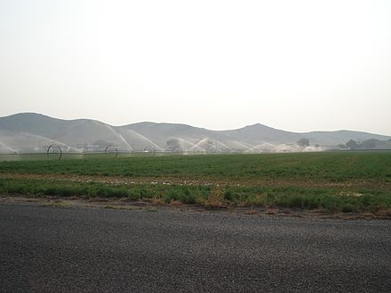 Watering an alfalfa field Watering alfalfa field.JPG
