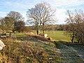 Weardale near Willow Green - geograph.org.uk - 322564.jpg
