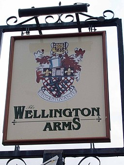 Wellington Arms pub sign - geograph.org.uk - 1737996