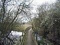 Wetland area, Gresham Park - geograph.org.uk - 756313.jpg
